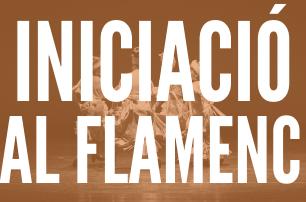 Iniciació al Flamenc